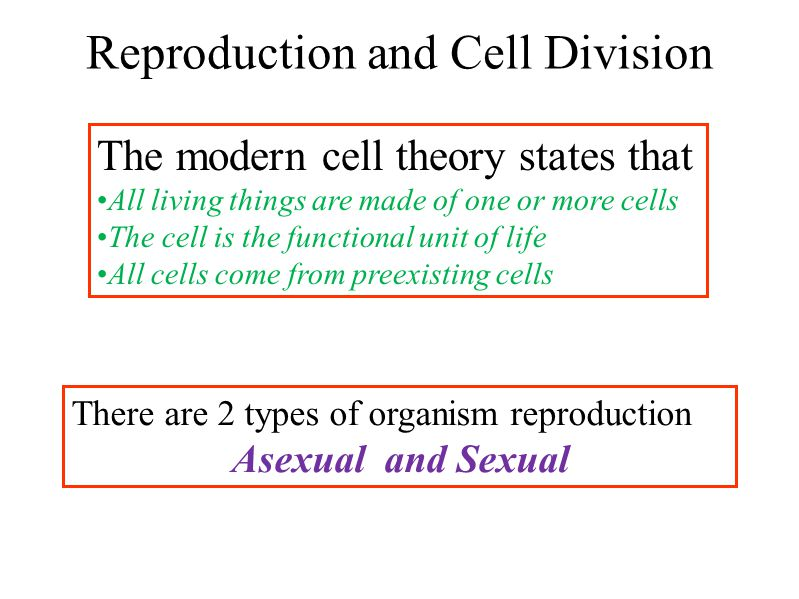 Reproduction and Cell Division The modern cell theory states that All living things are made of one or more cells The cell is the functional unit of life All cells come from preexisting cells There are 2 types of organism reproduction Asexual and Sexual