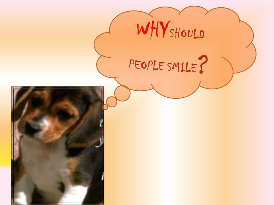 WHY SHOULD PEOPLE SMILE ?