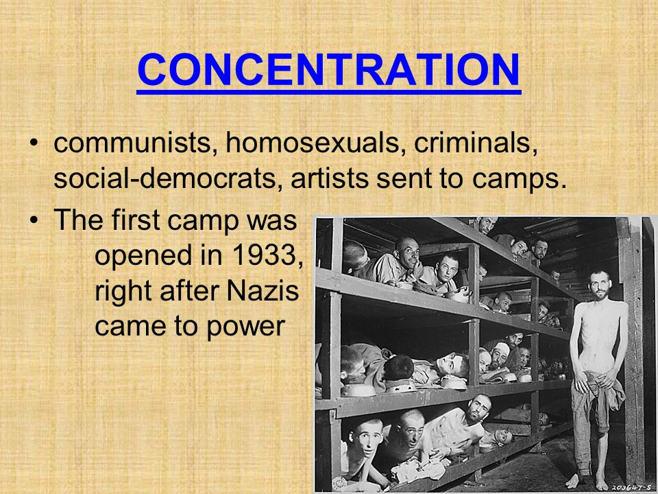 CONCENTRATION communists, homosexuals, criminals, social-democrats, artists sent to camps. The first camp was opened in 1933, right after Nazis came t