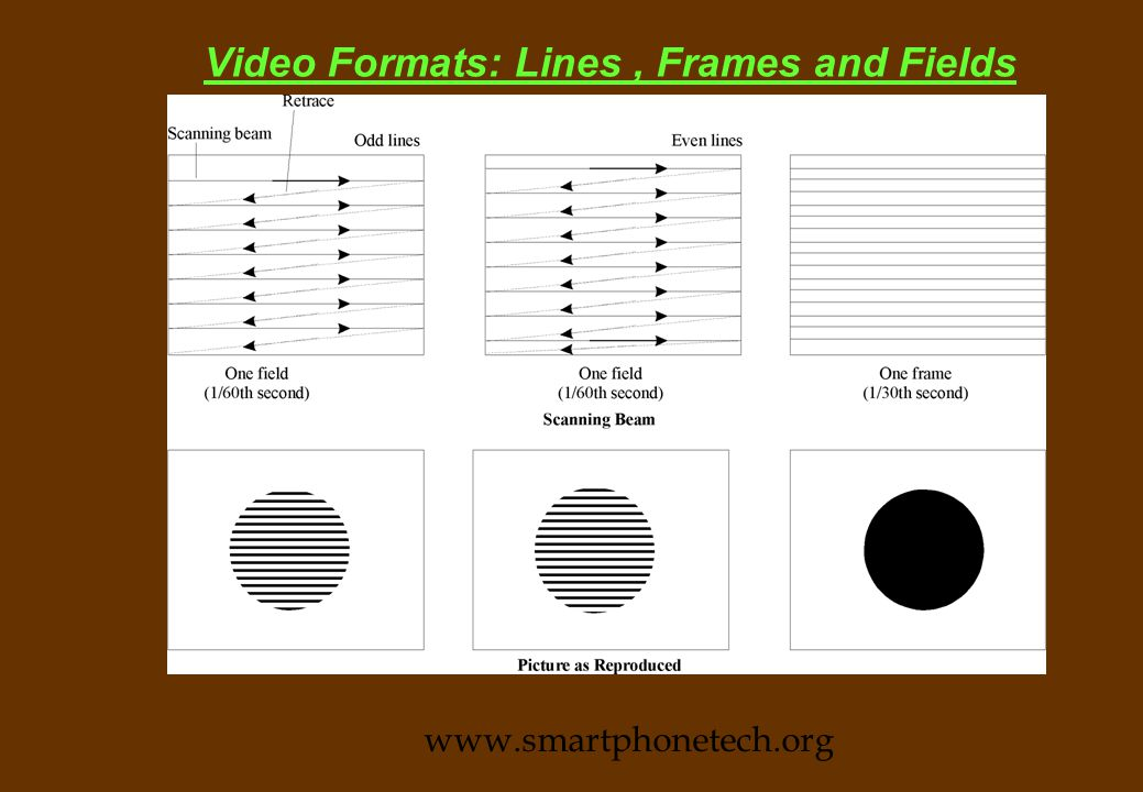 Video Formats: Lines, Frames and Fields n Brodcast and VCR video are generally refreshed @ 25/30 frames /sec n Each frame is composed of a large number of horizontal lines.