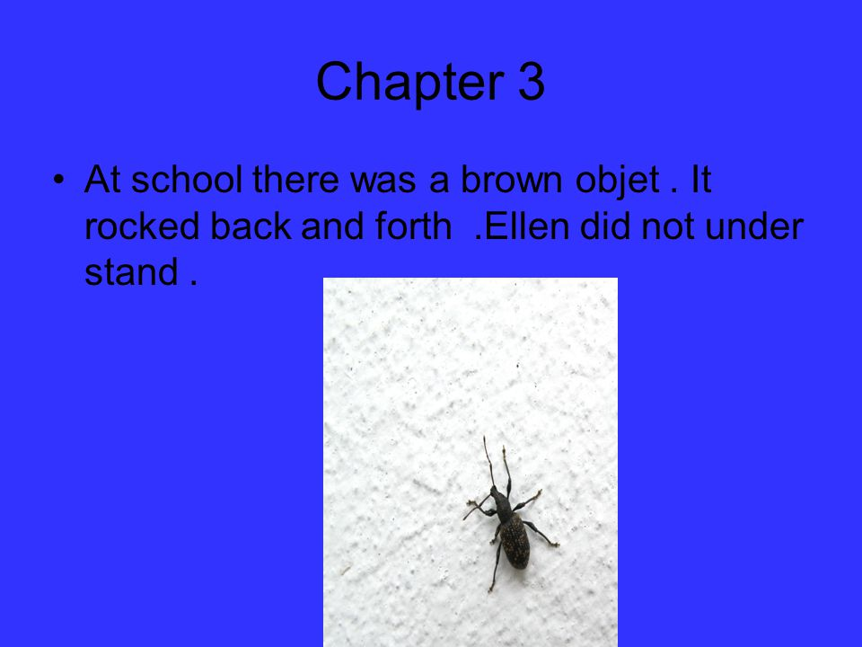 Chapter 3 At school there was a brown objet. It rocked back and forth.Ellen did not under stand.