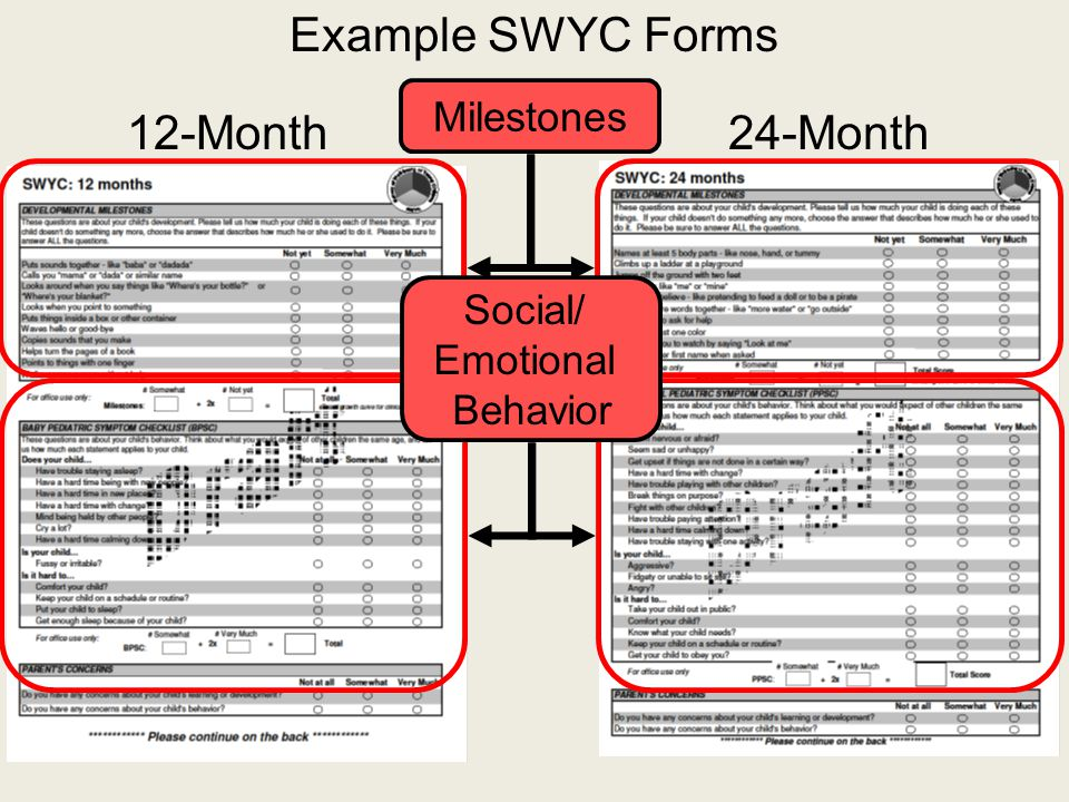Example SWYC Forms 12-Month24-Month Milestones Social/ Emotional Behavior