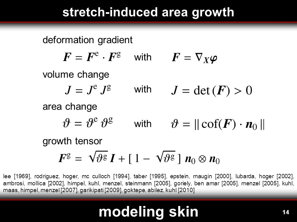 14 modeling skin stretch-induced area growth with deformation gradient volume change area change with growth tensor lee [1969], rodriguez, hoger, mc culloch [1994], taber [1995], epstein, maugin [2000], lubarda, hoger [2002], ambrosi, mollica [2002], himpel, kuhl, menzel, steinmann [2005], goriely, ben amar [2005], menzel [2005], kuhl, maas, himpel, menzel [2007], garikipati [2009], goktepe, abilez, kuhl [2010]