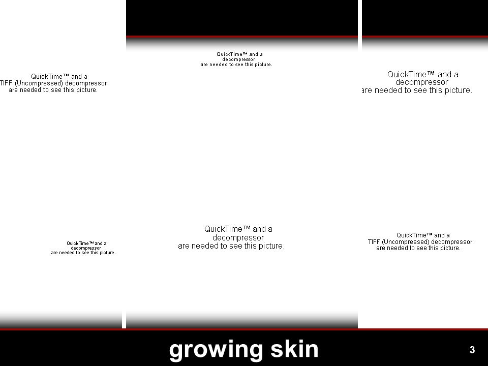 3 growing skin