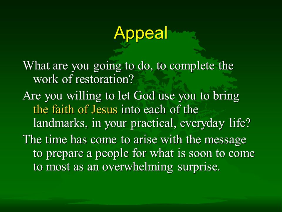 Appeal What are you going to do, to complete the work of restoration.