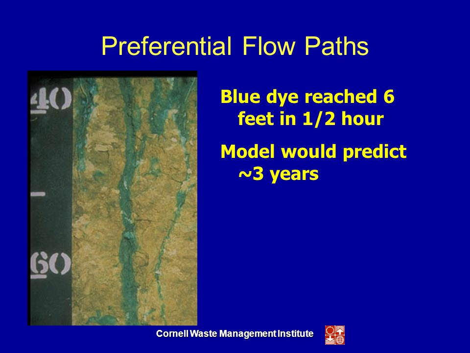 Cornell Waste Management Institute Preferential Flow Paths Blue dye reached 6 feet in 1/2 hour Model would predict ~3 years