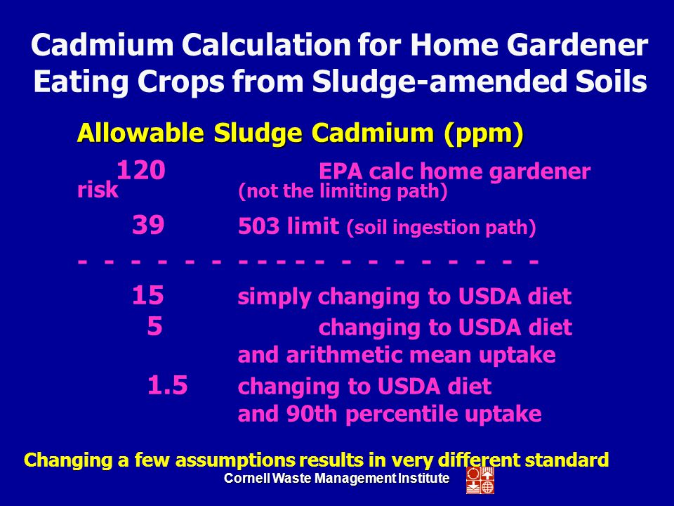 Cornell Waste Management Institute Allowable Sludge Cadmium (ppm) 120 EPA calc home gardener risk (not the limiting path) 39 503 limit (soil ingestion path) - - - - - - - - - - - - - - - - - - - 15 simply changing to USDA diet 5 changing to USDA diet and arithmetic mean uptake 1.5 changing to USDA diet and 90th percentile uptake Cadmium Calculation for Home Gardener Eating Crops from Sludge-amended Soils Changing a few assumptions results in very different standard