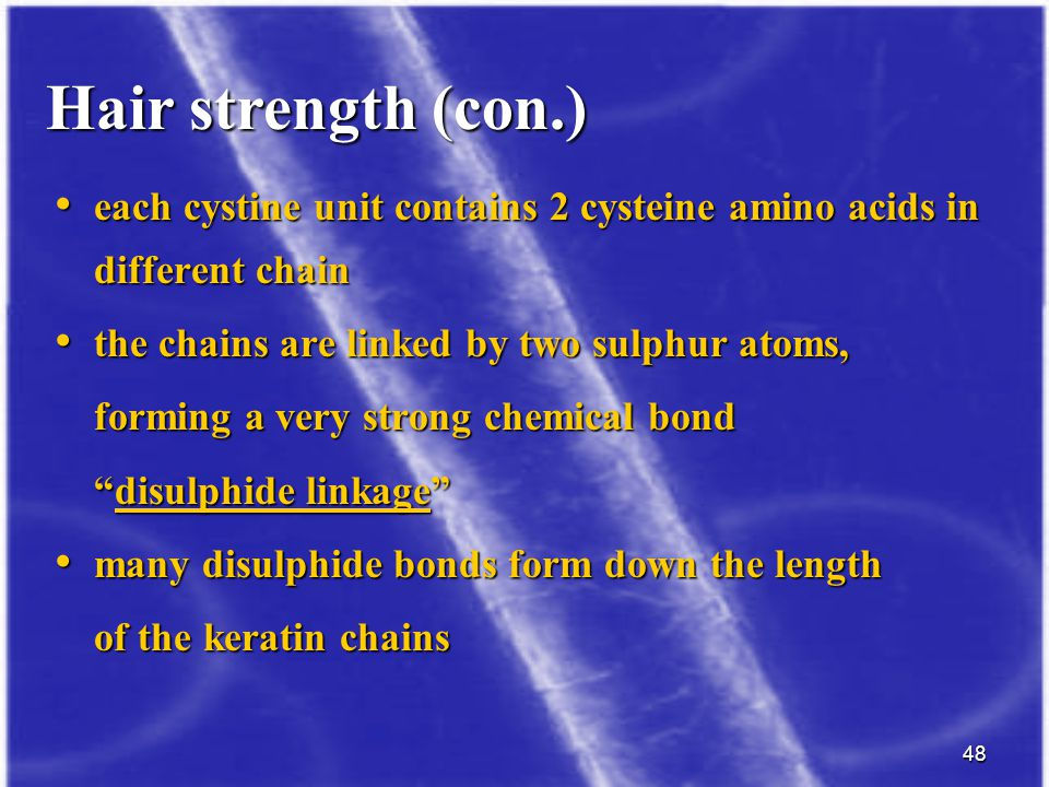 48 each cystine unit contains 2 cysteine amino acids in different chain each cystine unit contains 2 cysteine amino acids in different chain the chain