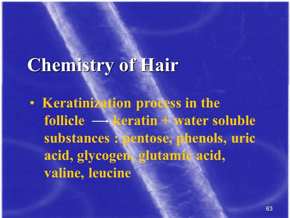 63 Chemistry of Hair Keratinization process in the follicle keratin + water soluble substances : pentose, phenols, uric acid, glycogen, glutamic acid,