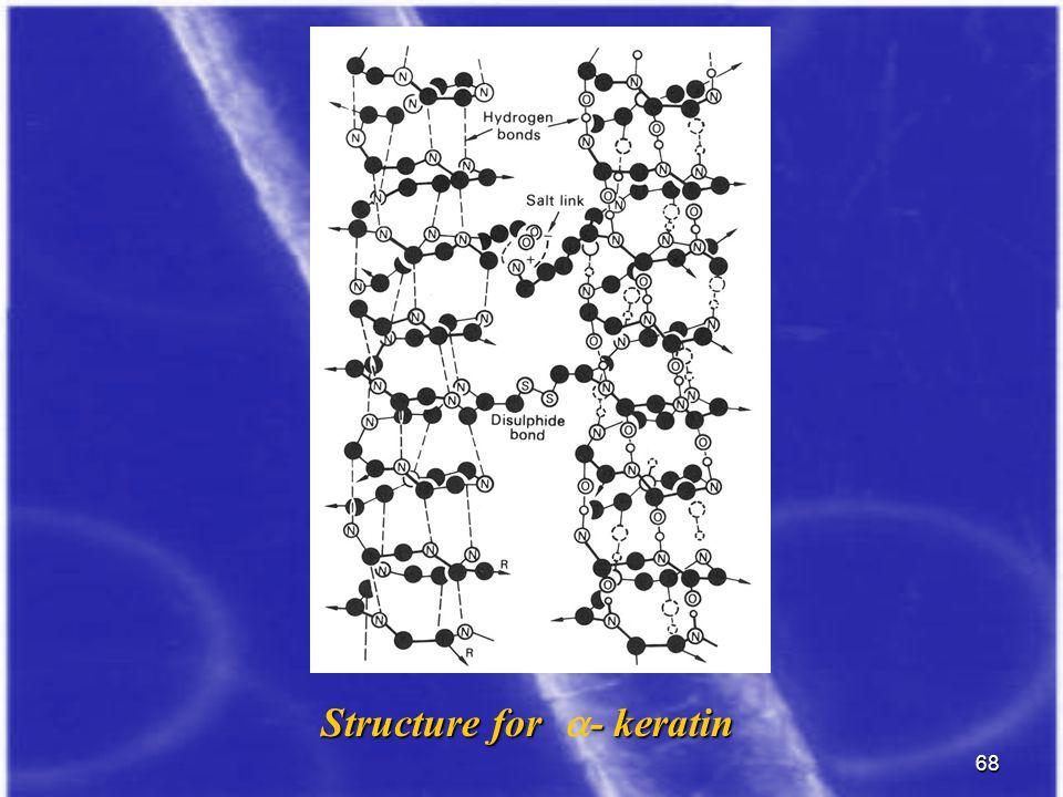 68 Structure for - keratin Structure for  - keratin