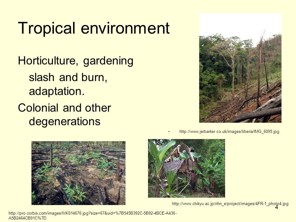 4 Tropical environment Horticulture, gardening slash and burn, adaptation.