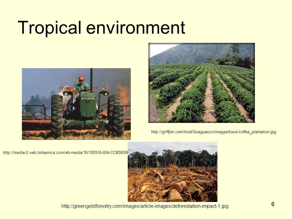 6 Tropical environment http://media-2.web.britannica.com/eb-media/16/100516-004-CCB5059D.jpg http://greengoldforestry.com/images/article-images/deforestation-impact-1.jpg http://griffjon.com/host/Guaguanco/images/tours/coffee_plantation.jpg