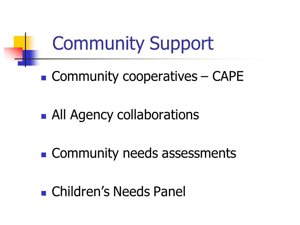 Community Support Community cooperatives – CAPE All Agency collaborations Community needs assessments Children's Needs Panel