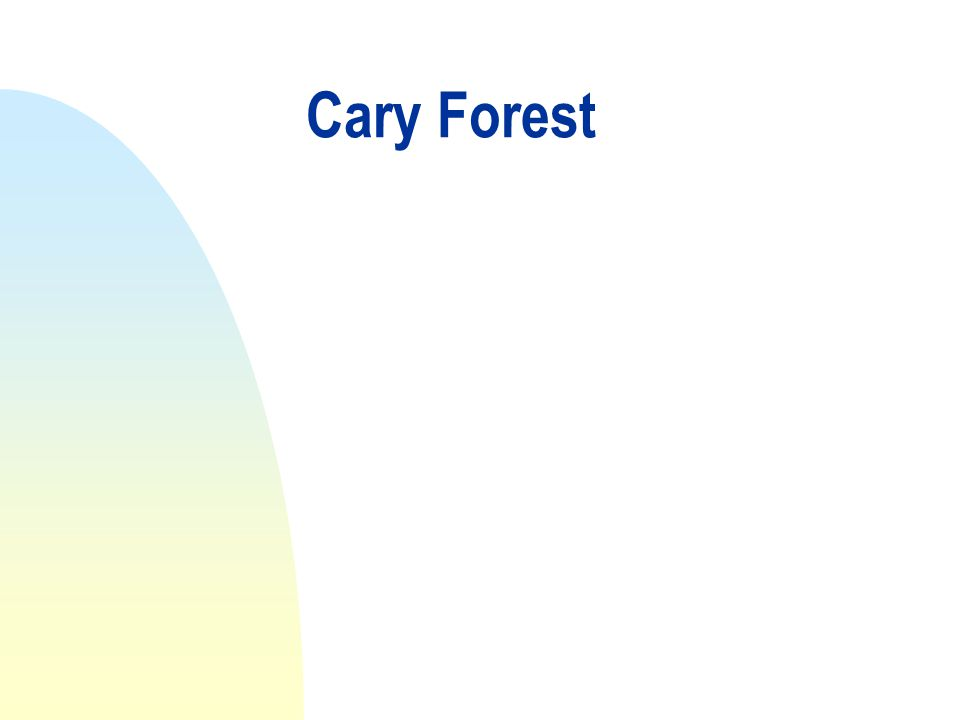 Cary Forest