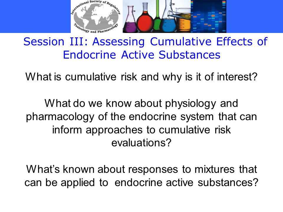 Session III: Assessing Cumulative Effects of Endocrine Active Substances What is cumulative risk and why is it of interest.