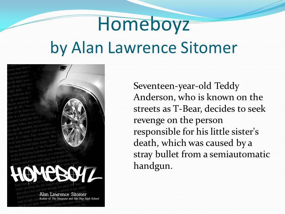 Homeboyz by Alan Lawrence Sitomer Seventeen-year-old Teddy Anderson, who is known on the streets as T-Bear, decides to seek revenge on the person responsible for his little sister s death, which was caused by a stray bullet from a semiautomatic handgun.