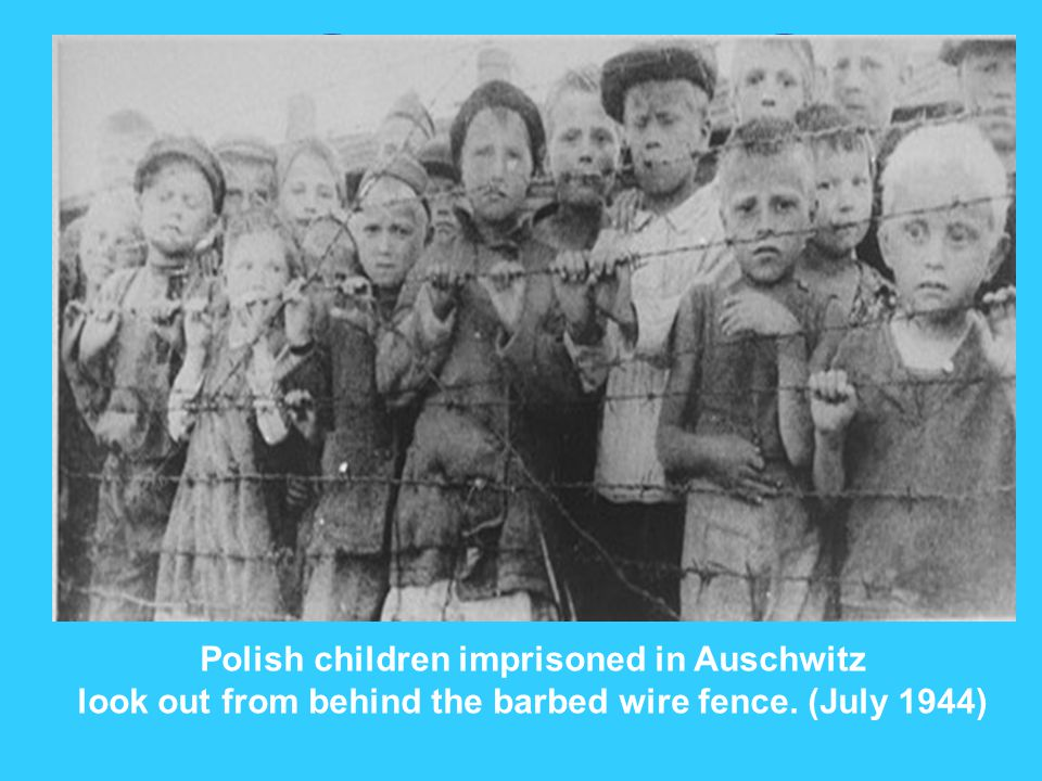 Polish children imprisoned in Auschwitz look out from behind the barbed wire fence. (July 1944)