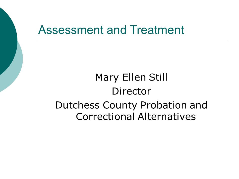 Assessment and Treatment Mary Ellen Still Director Dutchess County Probation and Correctional Alternatives