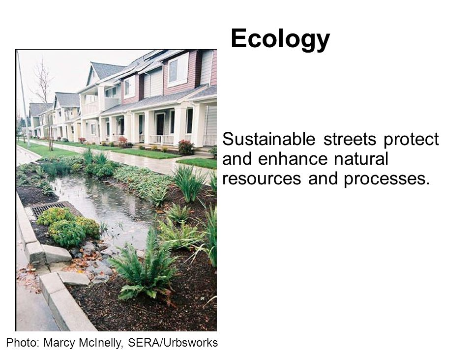 Ecology Sustainable streets protect and enhance natural resources and processes.
