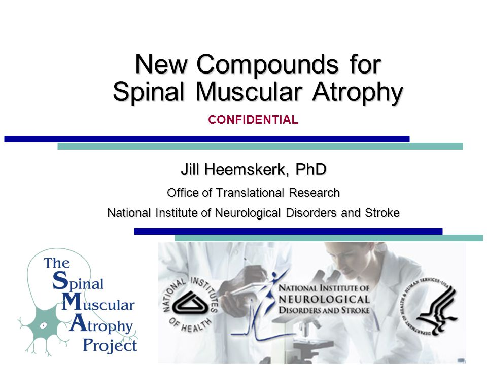 New Compounds for Spinal Muscular Atrophy Jill Heemskerk, PhD Office of Translational Research National Institute of Neurological Disorders and Stroke Jill Heemskerk, PhD Office of Translational Research National Institute of Neurological Disorders and Stroke CONFIDENTIAL