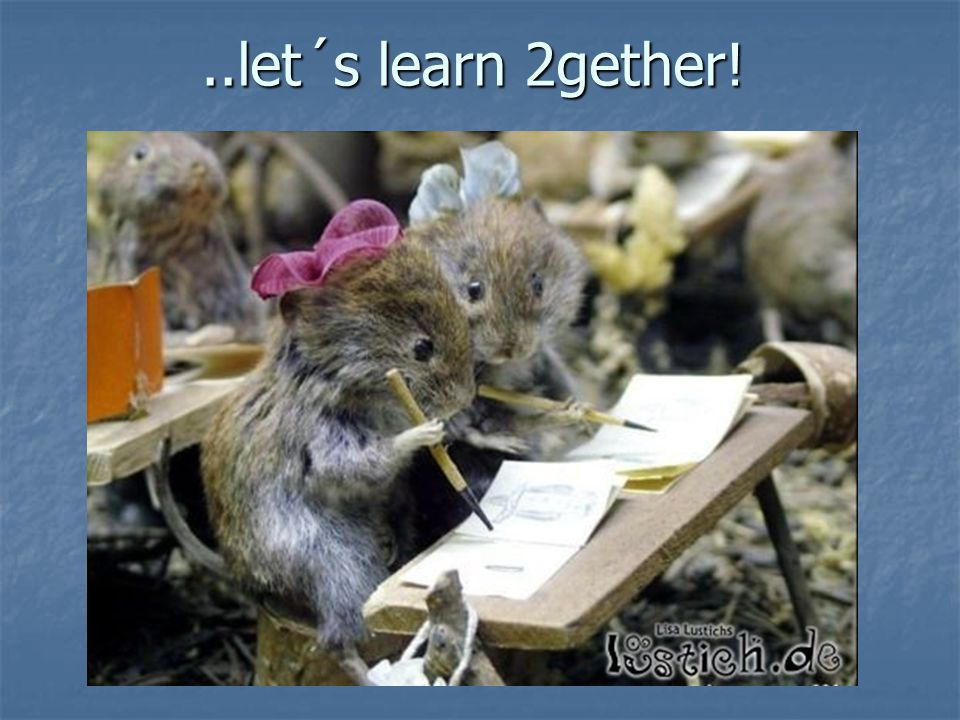 ..let´s learn 2gether!