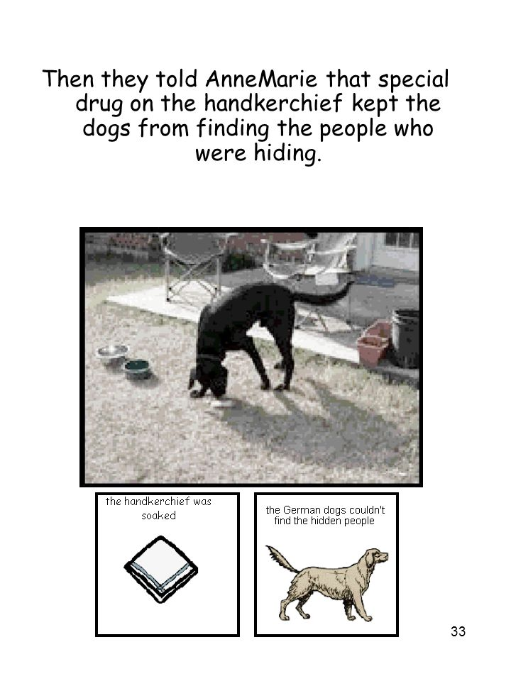 33 Then they told AnneMarie that special drug on the handkerchief kept the dogs from finding the people who were hiding.