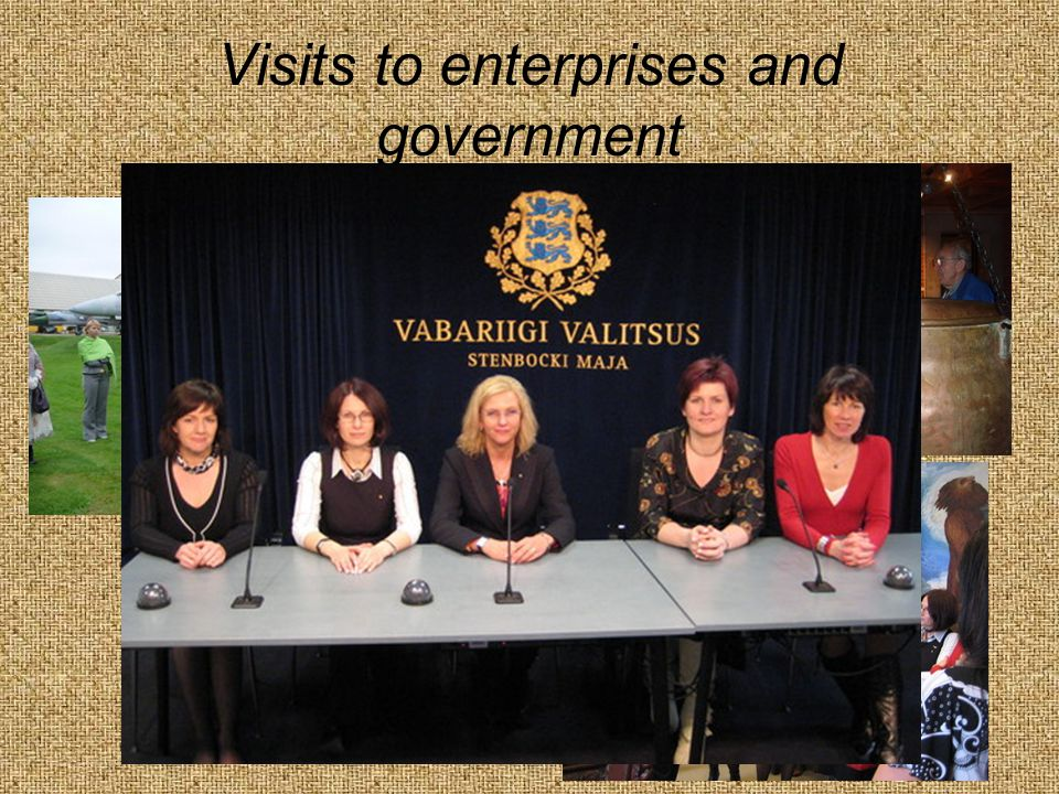 Visits to enterprises and government