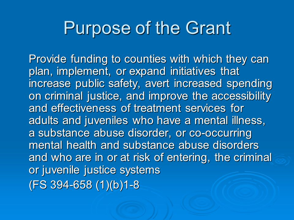 Purpose of the Grant Provide funding to counties with which they can plan, implement, or expand initiatives that increase public safety, avert increas