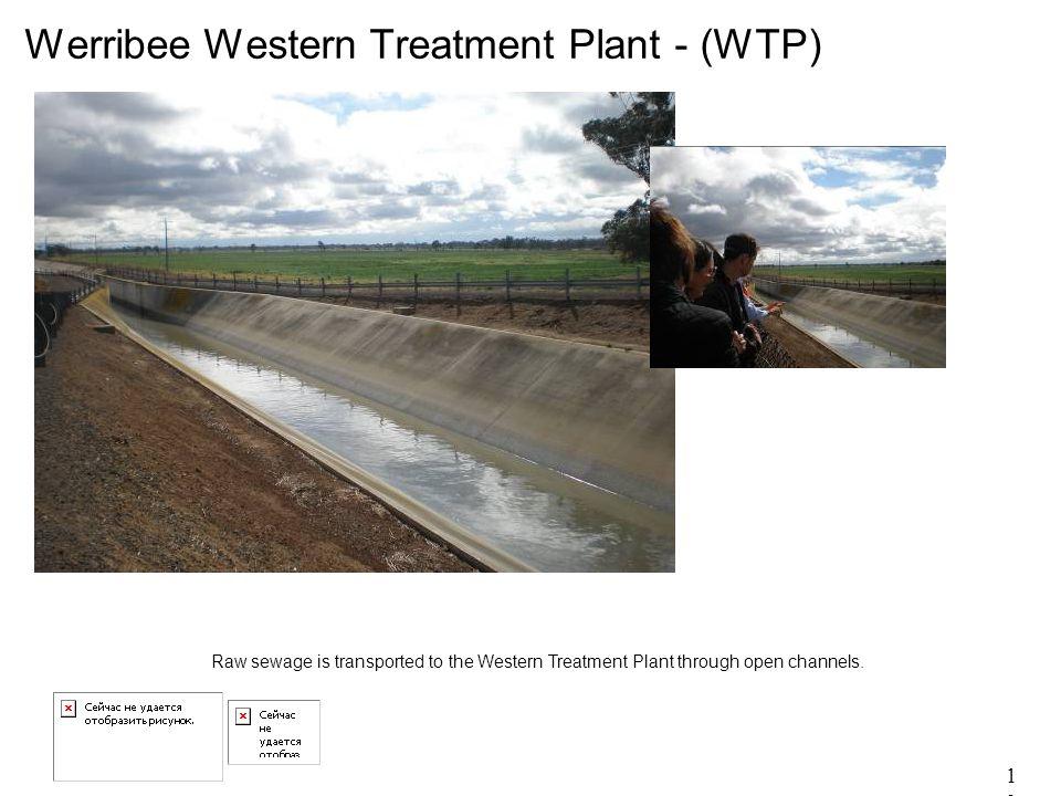13 Werribee Western Treatment Plant - (WTP) Raw sewage is transported to the Western Treatment Plant through open channels.