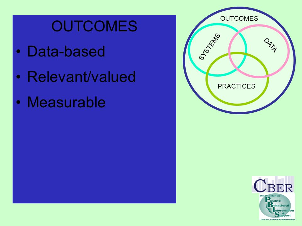 SYSTEMS PRACTICES DATA OUTCOMES Data-based Relevant/valued Measurable