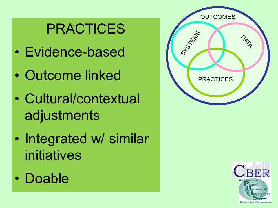 SYSTEMS PRACTICES DATA OUTCOMES PRACTICES Evidence-based Outcome linked Cultural/contextual adjustments Integrated w/ similar initiatives Doable