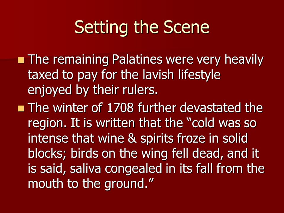 Setting the Scene The remaining Palatines were very heavily taxed to pay for the lavish lifestyle enjoyed by their rulers.