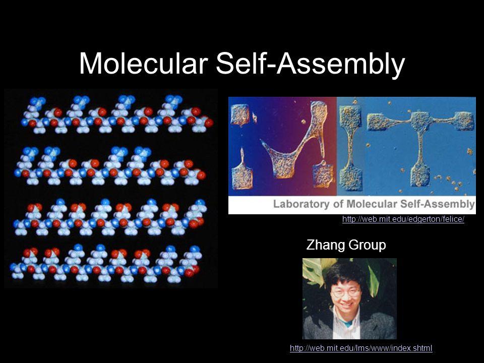 Molecular Self-Assembly http://web.mit.edu/lms/www/index.shtml http://web.mit.edu/edgerton/felice/ Zhang Group