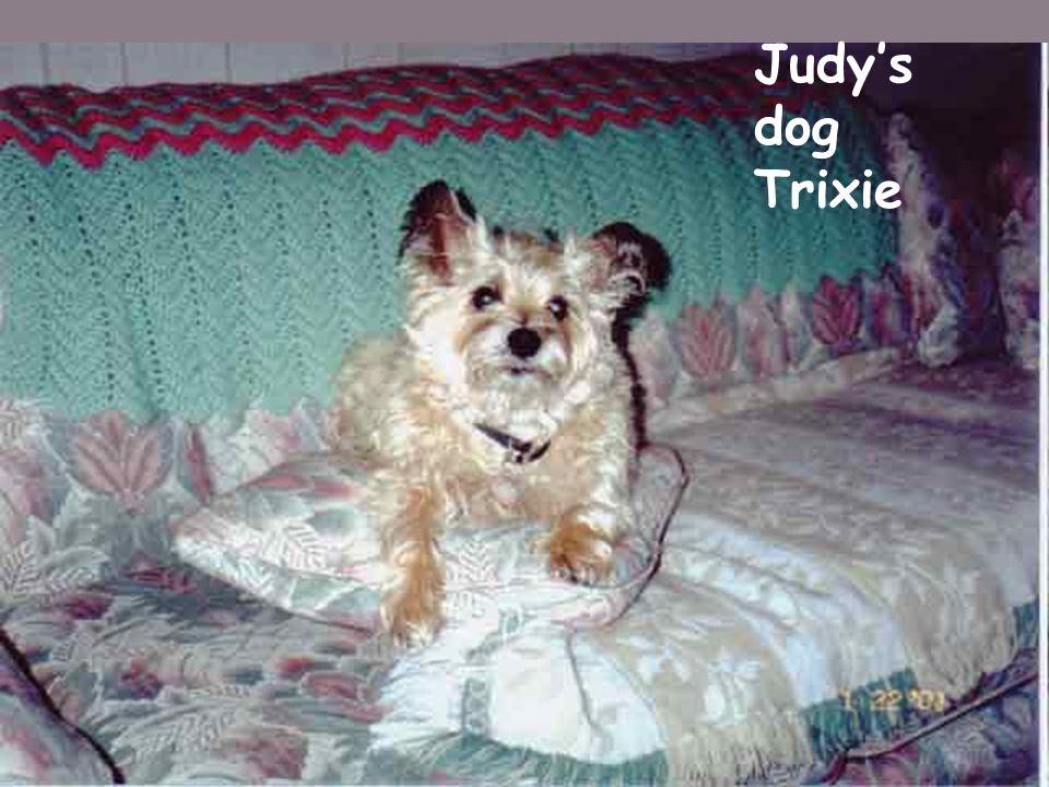 Judy's dog Trixie