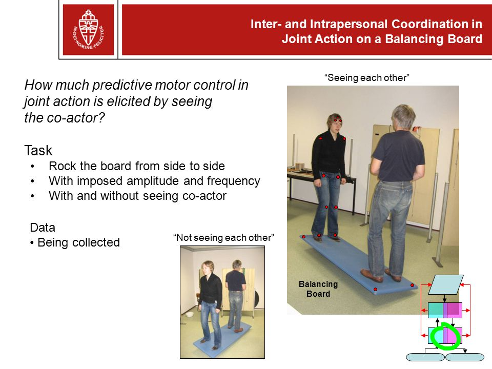 Inter- and Intrapersonal Coordination in Joint Action on a Balancing Board How much predictive motor control in joint action is elicited by seeing the co-actor.