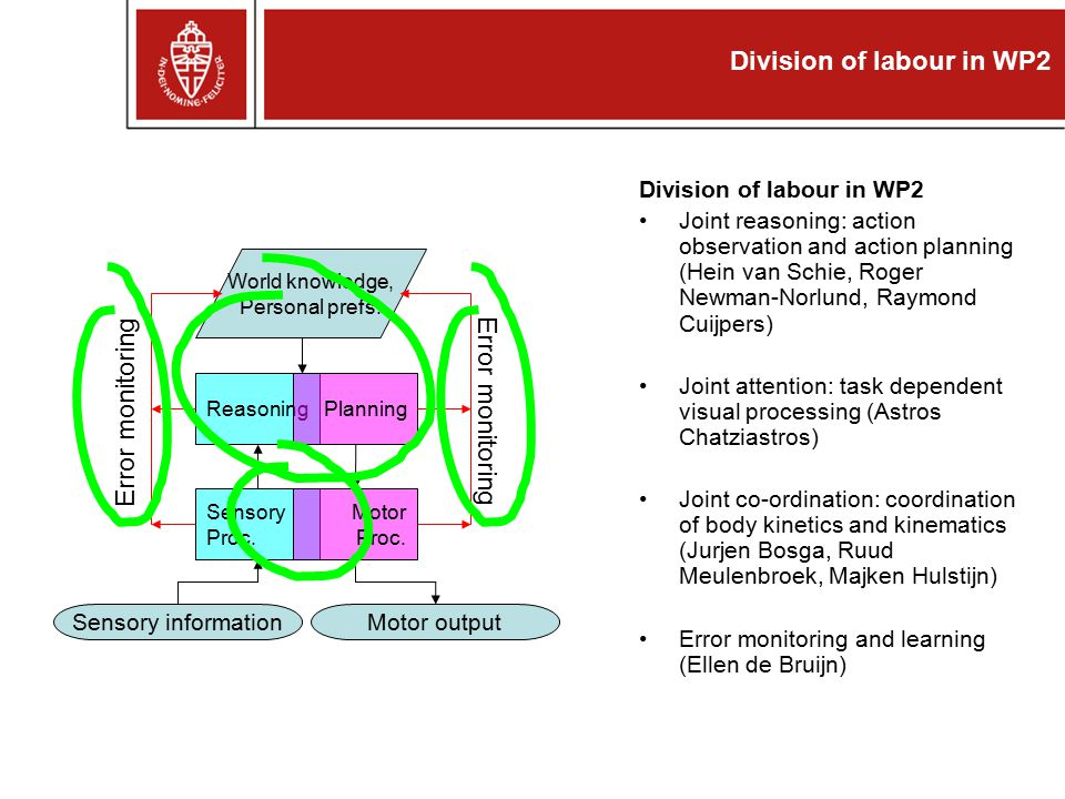 Division of labour in WP2 Joint reasoning: action observation and action planning (Hein van Schie, Roger Newman-Norlund, Raymond Cuijpers) Joint attention: task dependent visual processing (Astros Chatziastros) Joint co-ordination: coordination of body kinetics and kinematics (Jurjen Bosga, Ruud Meulenbroek, Majken Hulstijn) Error monitoring and learning (Ellen de Bruijn) Sensory Proc.