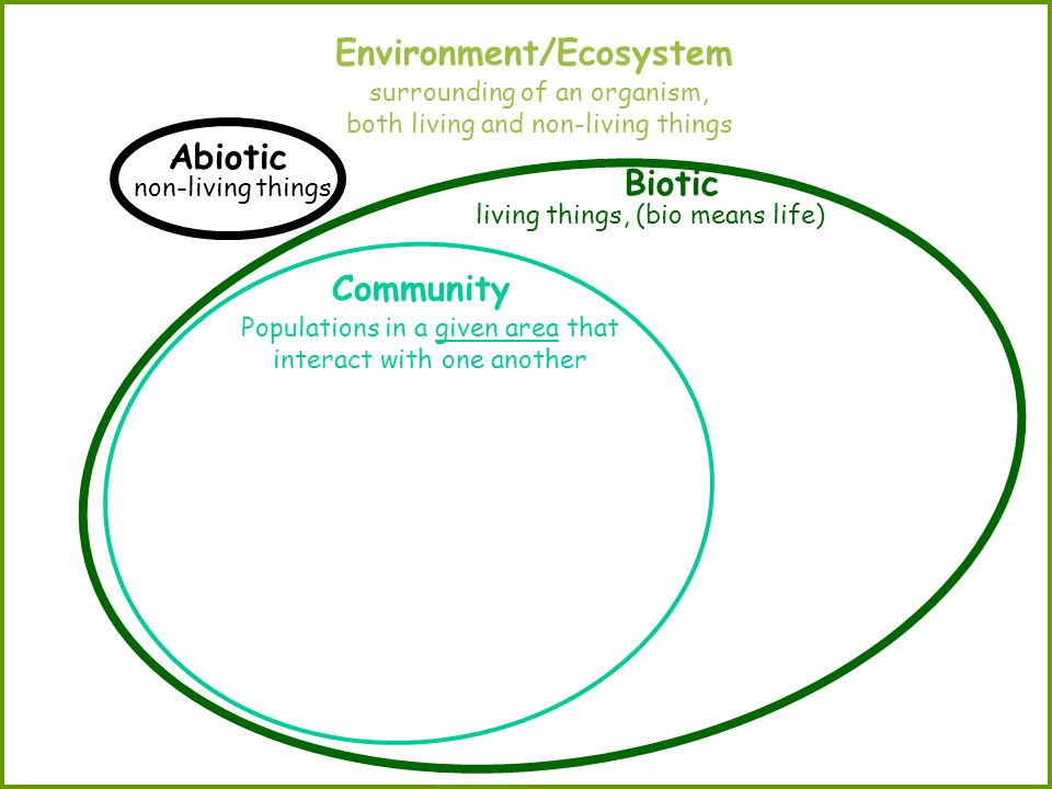 Environment/Ecosystem Abiotic Biotic Community surrounding of an organism, both living and non-living things non-living things living things, (bio means life) Populations in a given area that interact with one another
