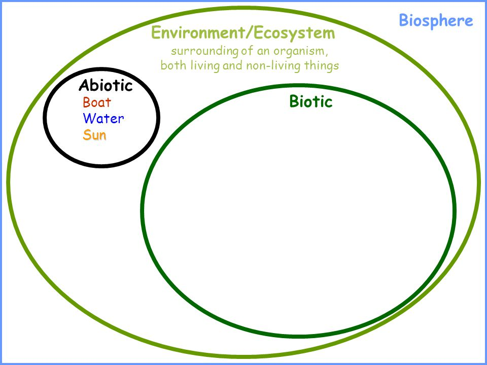 Environment/Ecosystem surrounding of an organism, both living and non-living things Abiotic Biotic Boat WaterSun Biosphere