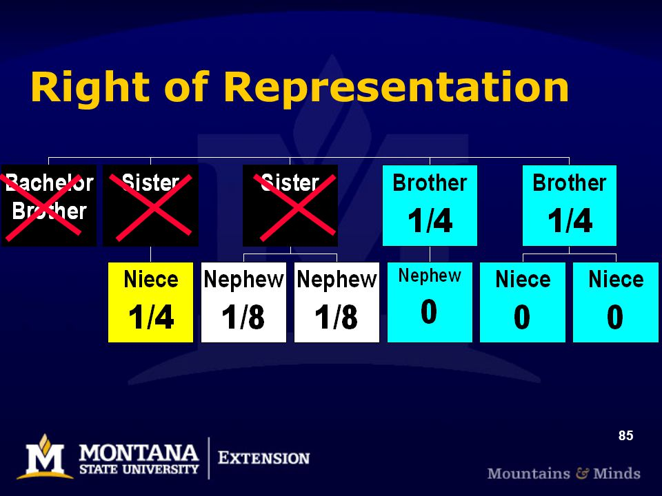85 Right of Representation