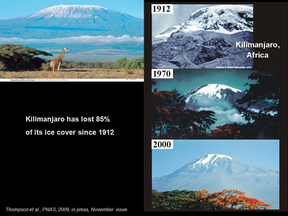 Kilimanjaro has lost 85% of its ice cover since 1912 Thompson et al., PNAS, 2009, in press, November issue