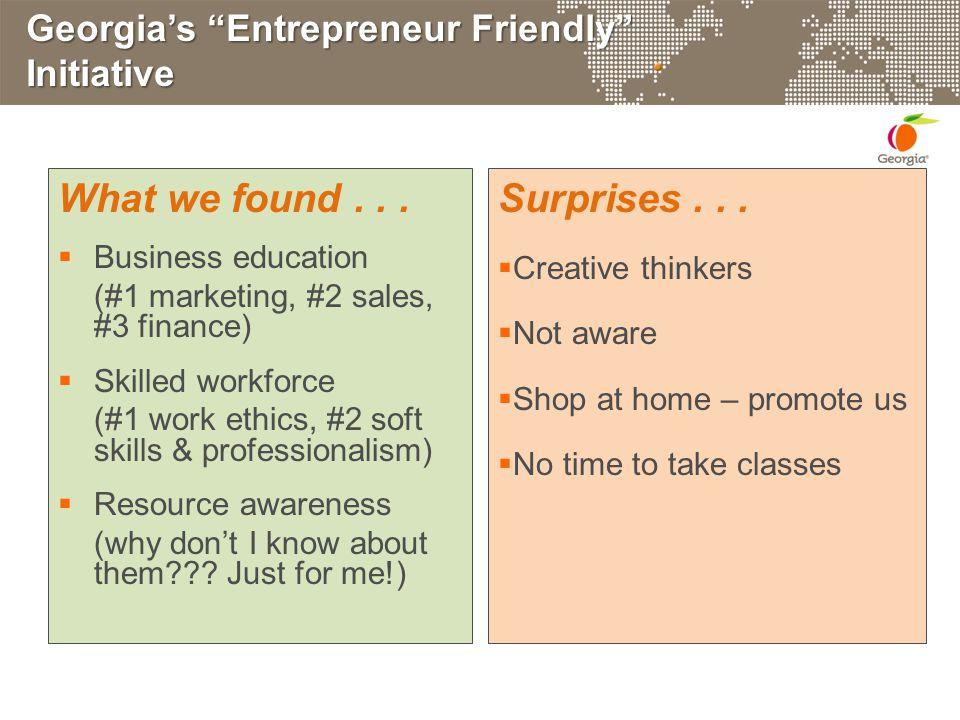 Georgia's Entrepreneur Friendly Initiative What we found...