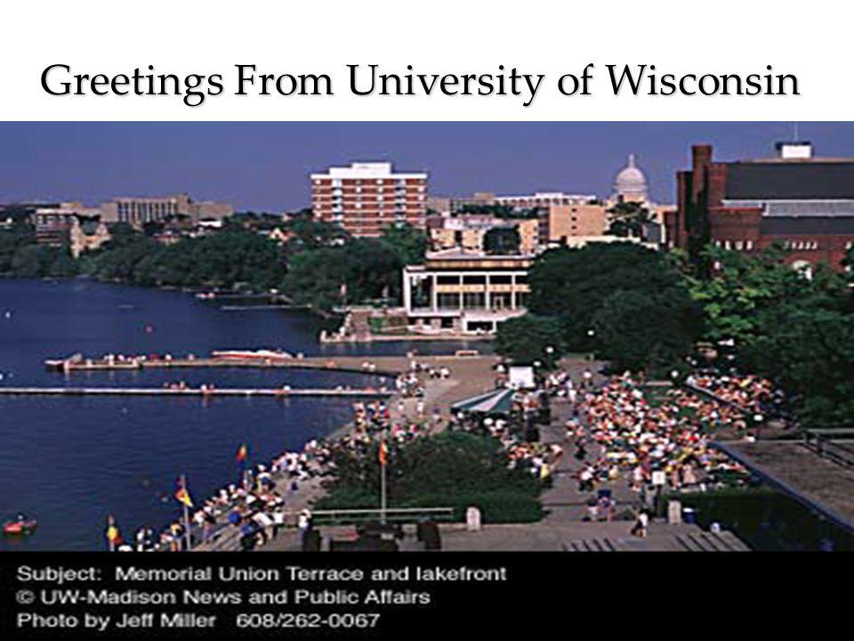 Project Team: Mary Ellen Murray, PH.D, RN Paula Jarzemsky, MS, RN Diana Girdley, MS, RN Steve Douglas, MS, RN Greetings From University of Wisconsin