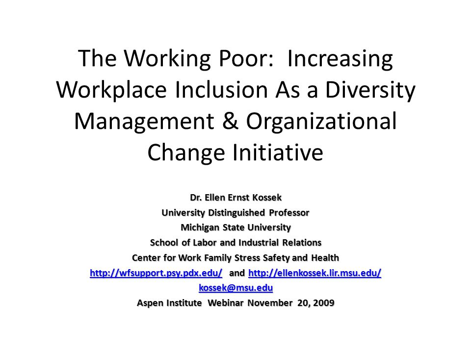 The Working Poor: Increasing Workplace Inclusion As a Diversity Management & Organizational Change Initiative Dr. Ellen Ernst Kossek University Distin