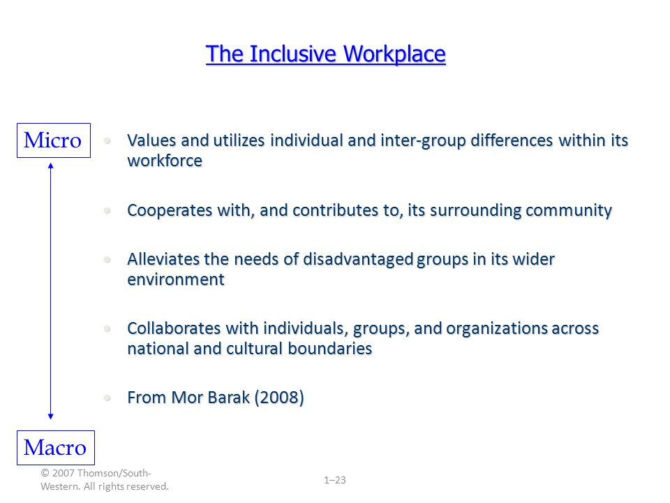 © 2007 Thomson/South- Western. All rights reserved. 1–23 The Inclusive Workplace Values and utilizes individual and inter-group differences within its