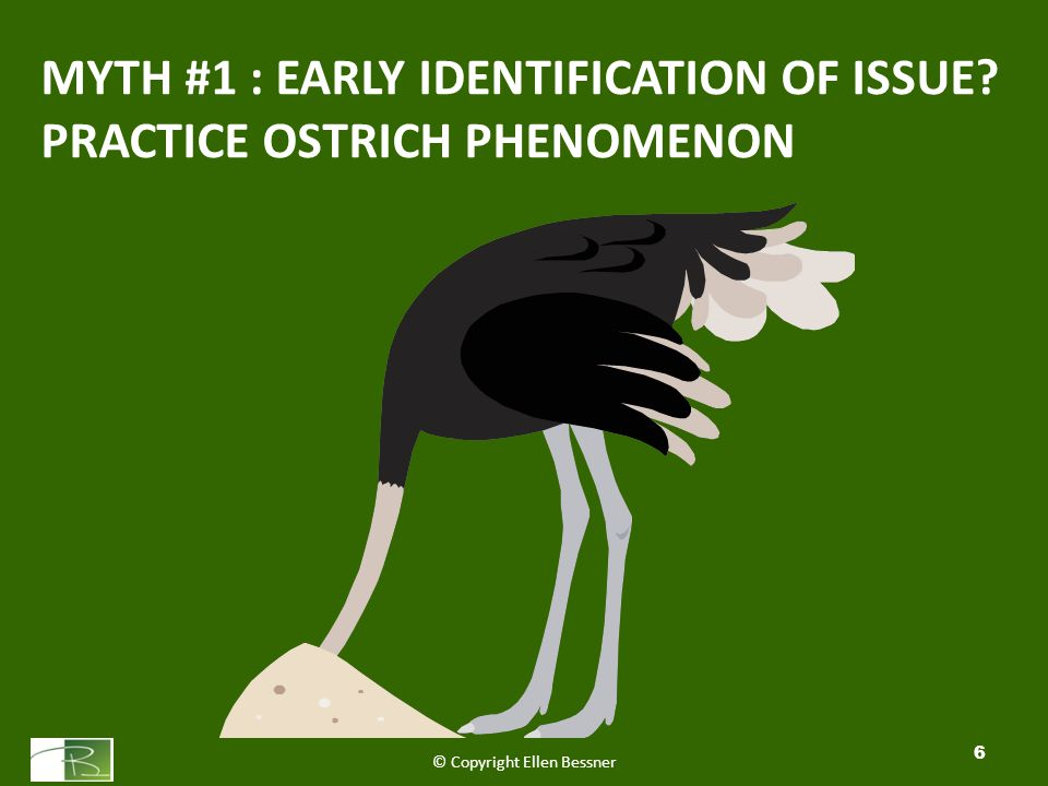 MYTH #1 : EARLY IDENTIFICATION OF ISSUE PRACTICE OSTRICH PHENOMENON © Copyright Ellen Bessner 6