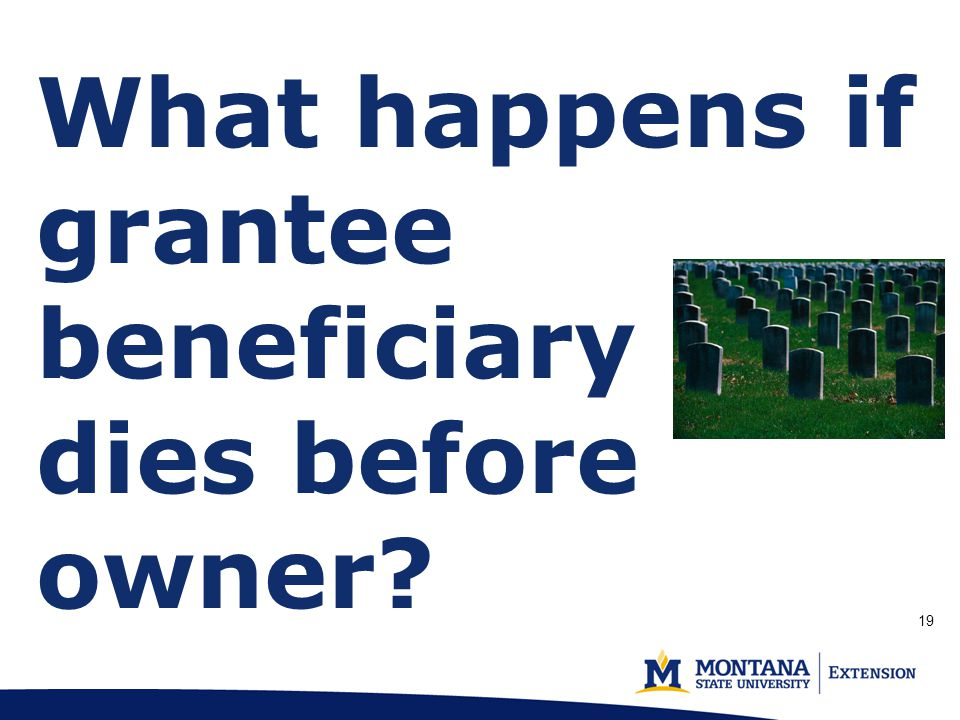 What happens if grantee beneficiary dies before owner? (p. 2) 19