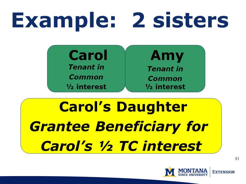 Example: 2 sisters Carol's Daughter Grantee Beneficiary for Carol's ½ TC interest Carol Tenant in Common ½ interest Amy Tenant in Common ½ interest 51