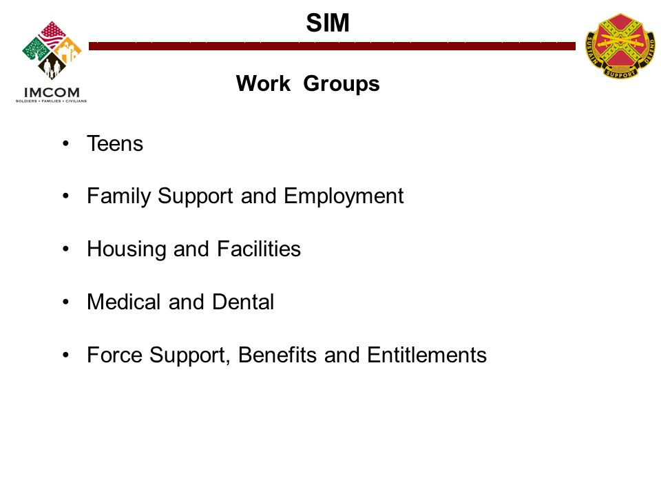 SIM Teens Family Support and Employment Housing and Facilities Medical and Dental Force Support, Benefits and Entitlements Work Groups