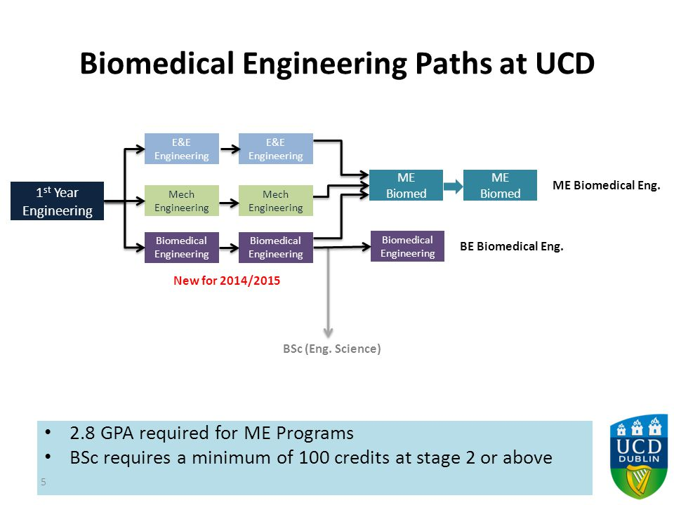 Biomedical Engineering Paths at UCD 2.8 GPA required for ME Programs BSc requires a minimum of 100 credits at stage 2 or above 5 1 st Year Engineering E&E Engineering Mech Engineering Biomedical Engineering E&E Engineering Mech Engineering Biomedical Engineering ME Biomed ME Biomedical Eng.