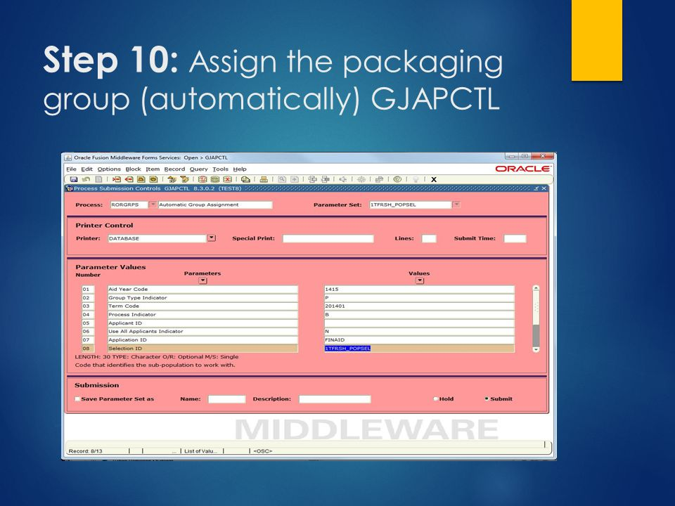 Step 10: Assign the packaging group (automatically) GJAPCTL